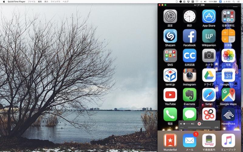 iPhoneのキャプチャ画面表示