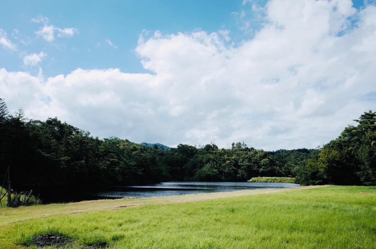 金勝アルプス途中の池