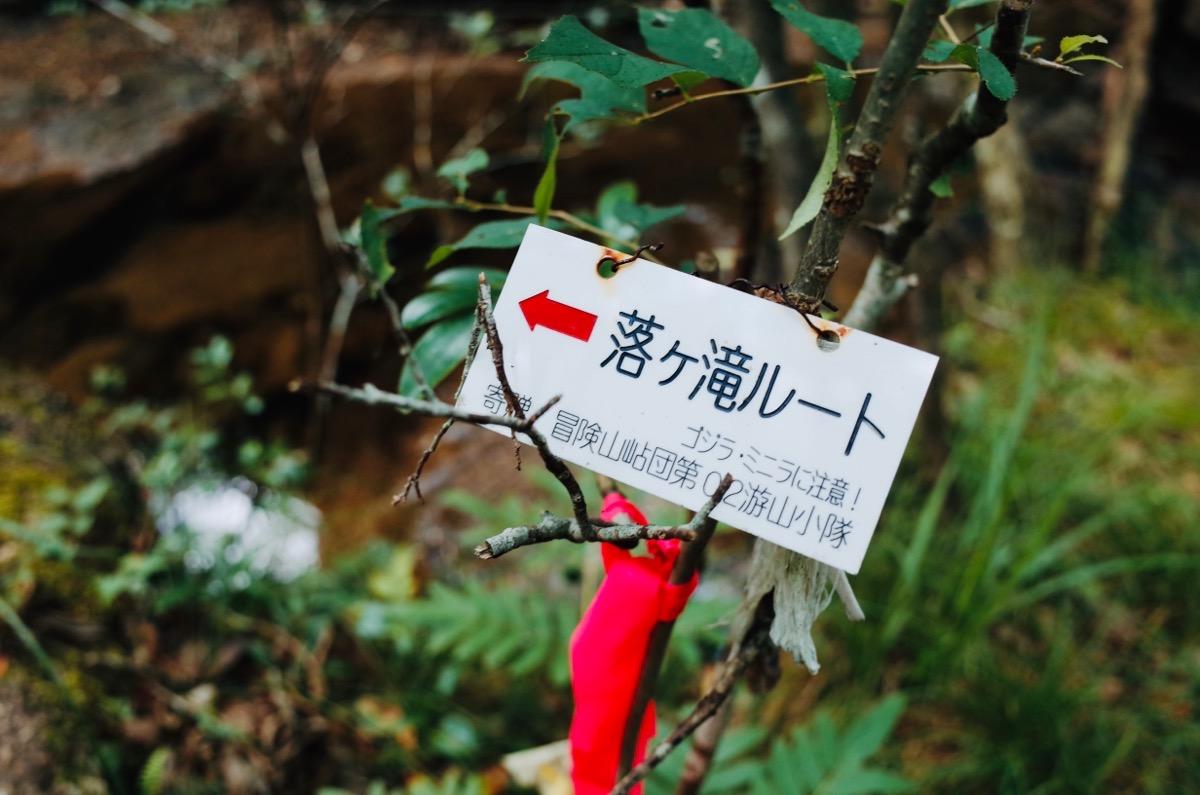 金勝アルプス、落ヶ滝への道