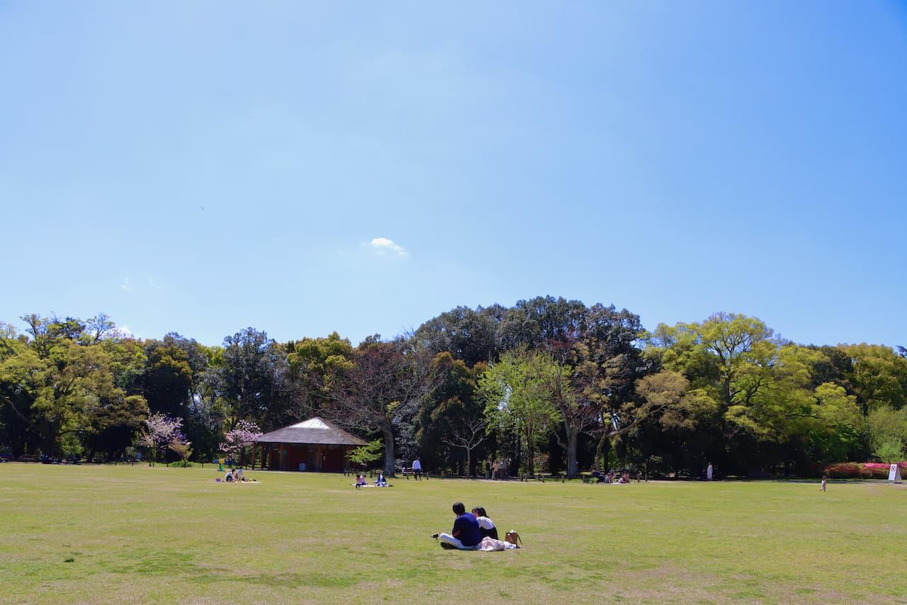 京都府立植物園の芝生広場