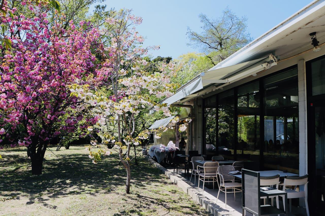 京都府立植物園にあるカフェ